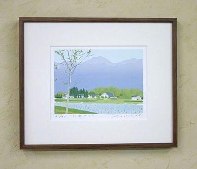画像1: 水田のころ